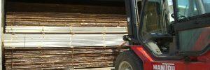 medienos dziovinimas